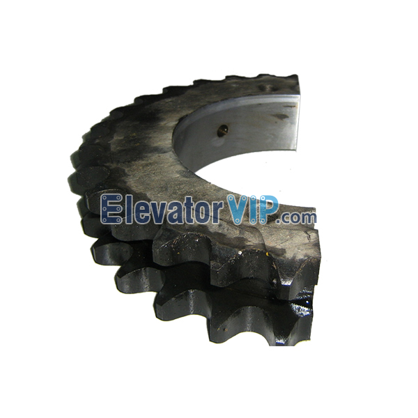 Escalator 16A Double Row Chain Sprockets, Escalator Duplex Sprocket 29 Teeth, Escalator Duplex Sprocket with Taper Bore, OTIS Escalator Industrial Gear Sprocket, Escalator Chain Sprocket, Escalator Chain Sprocket Supplier, Escalator Chain Sprocket Manufacturer, Escalator Chain Sprocket Exporter, Wholesale Escalator Chain Sprocket, Cheap Escalator Chain Sprocket for Sale, Buy Quality & Original Escalator Chain Sprocket Online, PNS1.1-1
