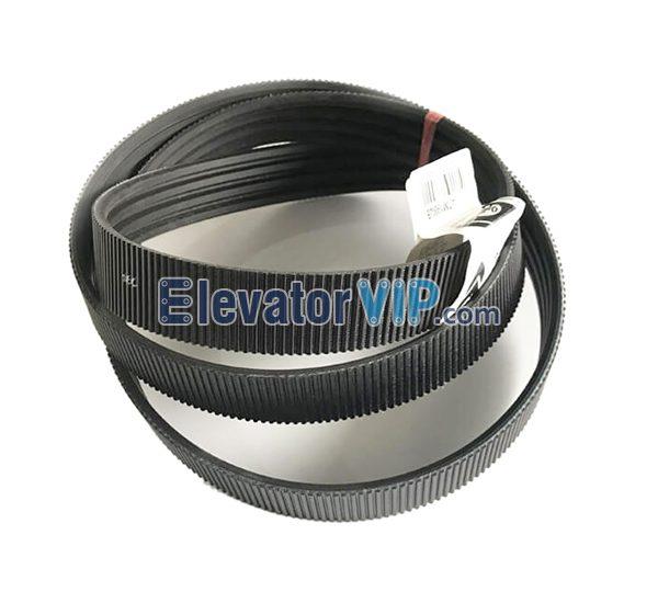 OTIS Escalator V-Belt, OTIS Escalator Poly-V Drive Belt, 506NCE Belt, GCA717D1, Poly-V Drive Belt 1900mm, Escalator Handrail Drive Belt Supplier
